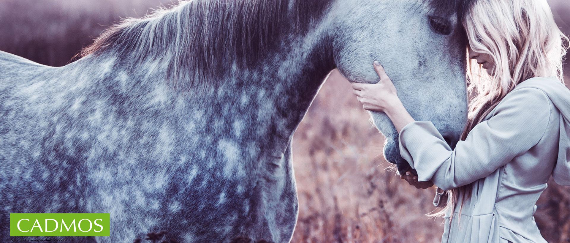 CADMOS für Pferdefreunde und Reiter …